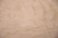0.6mm Quilted Maple (Muschelahorn) Furnier 1.33m² E 16 64 13